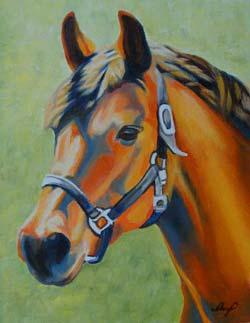 Horse250